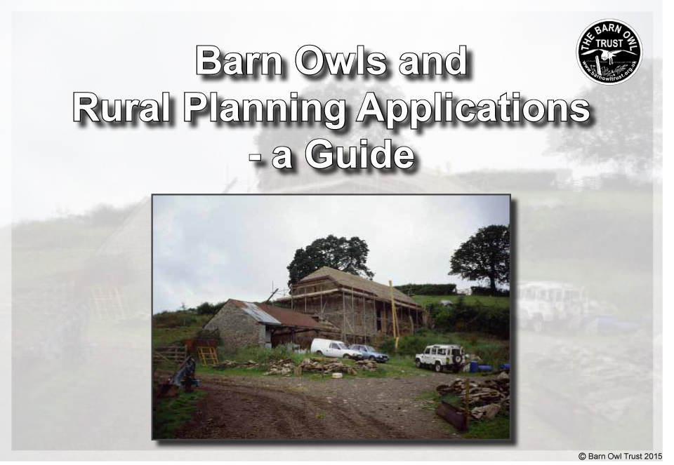 Barn Owls and Rural Planning Applications a Guide 2015 pdf download