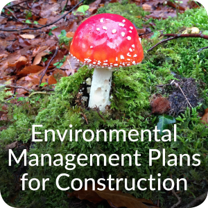 Environmental Management Plans for Construction