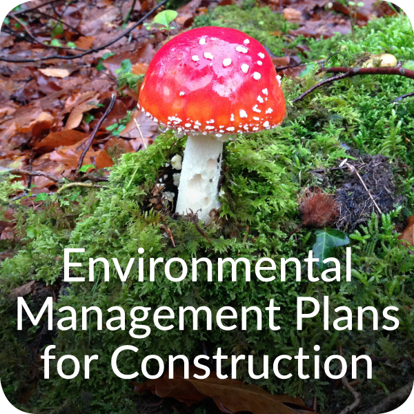 Environmental Management Plans for Construction in Devon